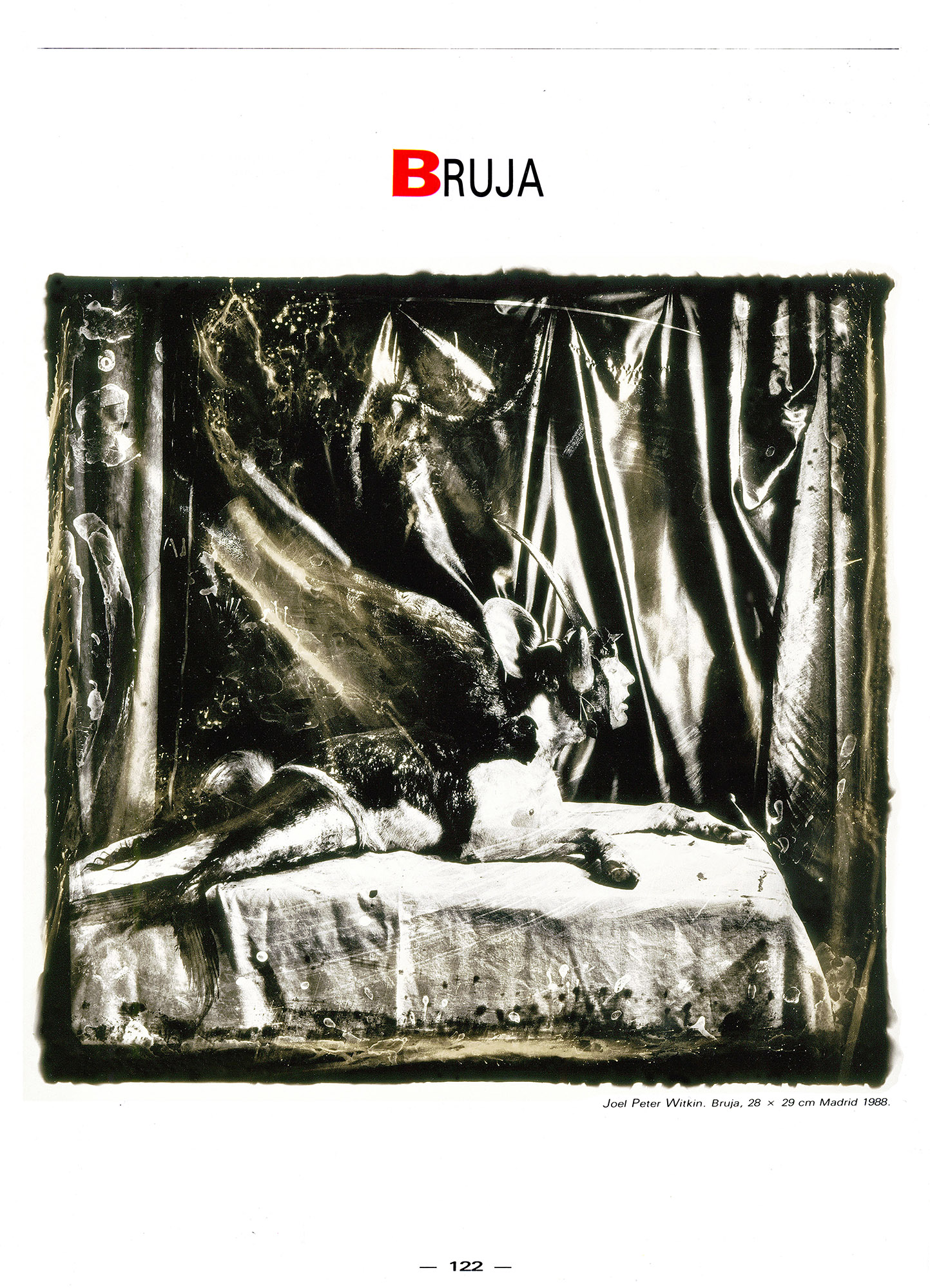 Witkin Sur Express 2000px 002